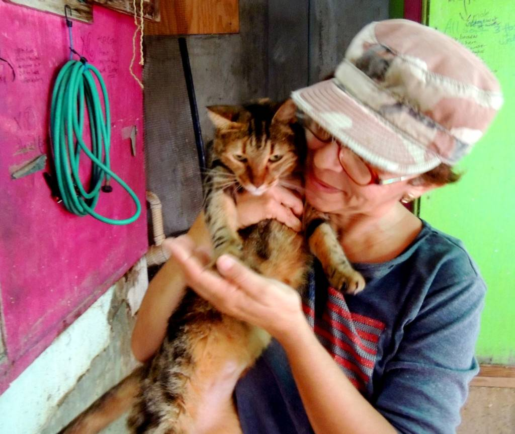 P.A.W.S. owner Madi Collins hugs a cat during her 12-hour work day.