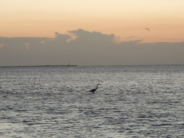 Caye Caulker, Belize - November 2012