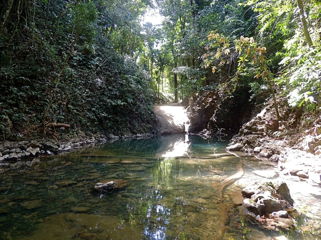 This is one of the beds of water on the path to Los Siete Altares. Remember, bring your hiking shoes.